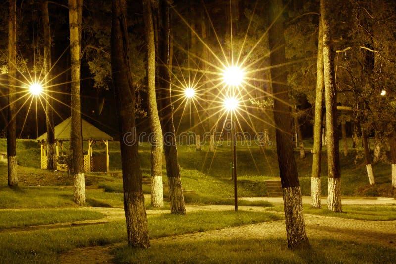 Nella notte immagini stock