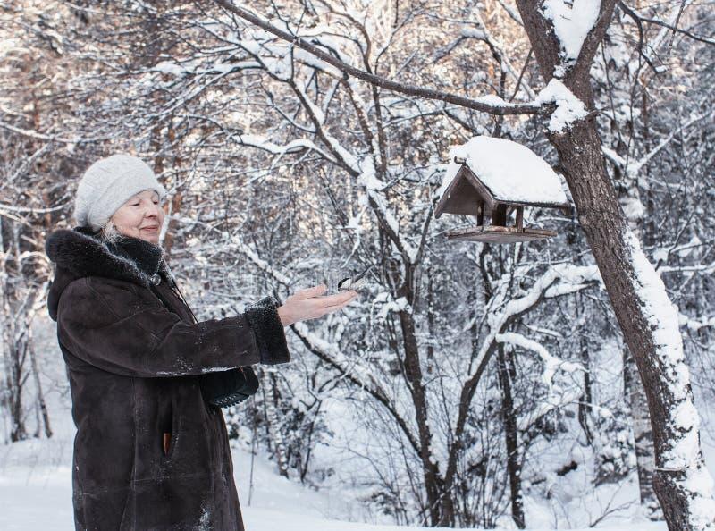 Nella sosta di inverno immagine stock