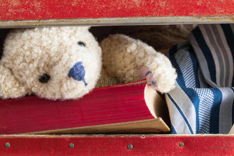 Nella valigia fotografia stock
