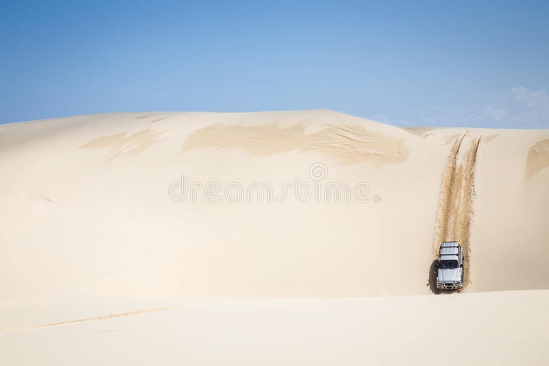 Nelle dune fotografie stock libere da diritti
