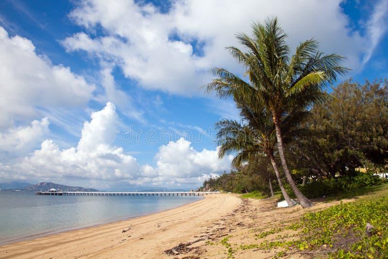 Nelly Bay Jetty y palmeras, isla magnética Townsville fotografía de archivo