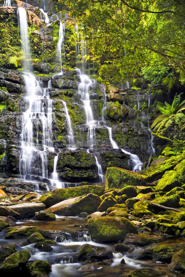 Nelson Falls royalty free stock image