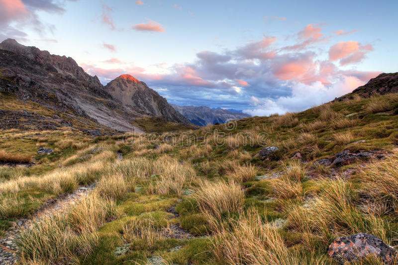 Nelson Lakes Nya Zeeland arkivfoton