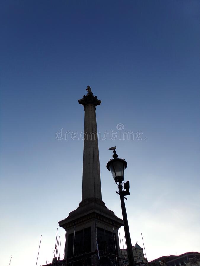Nelson's Column National Monument på Trafalgar Square i London, Förenade kungariket royaltyfri bild