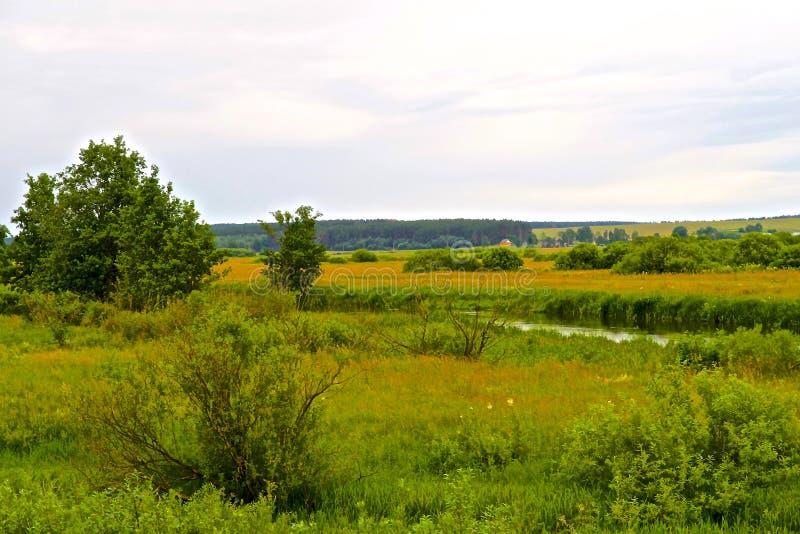 Neman-Fluss und grüne Wiesen in Weißrussland lizenzfreies stockbild