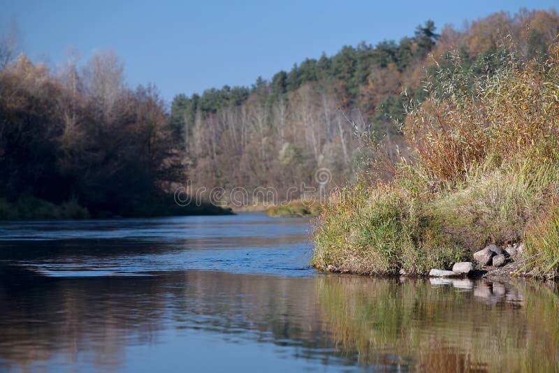 Neman rzeka w spadku zdjęcia royalty free