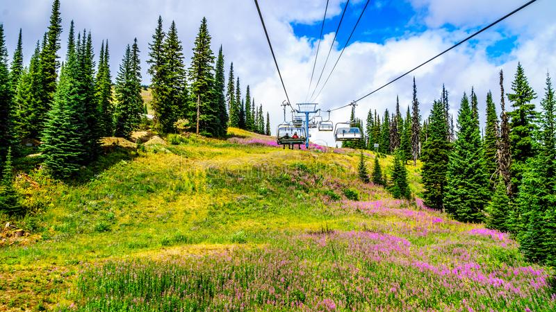 Nemend de stoeltjeslift doe tot een stijging tot de bovenkant van Tod Mountain stock foto's