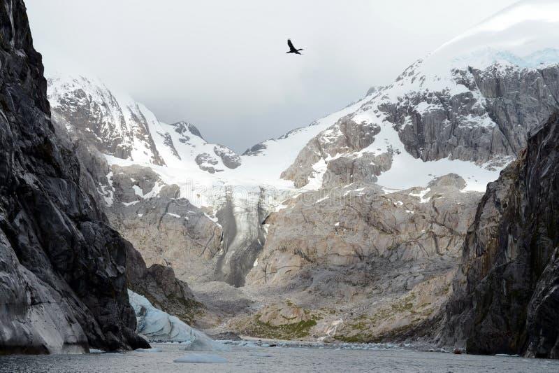 Nena Glacier no arquipélago de Tierra del Fuego fotos de stock royalty free
