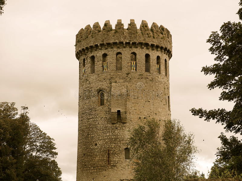 Nenagh slott Irland arkivbild