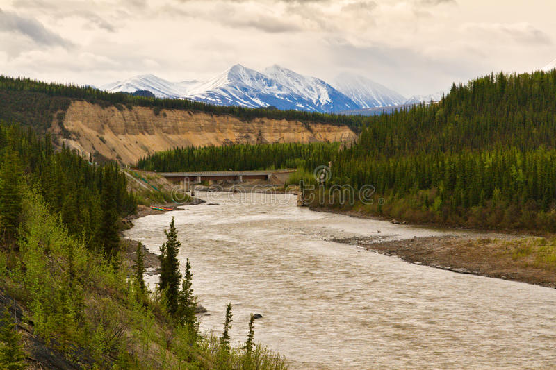 Nenana River in Denali, Alaska royalty free stock photo