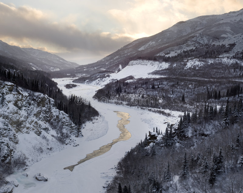 Nenana River Valley photographie stock libre de droits
