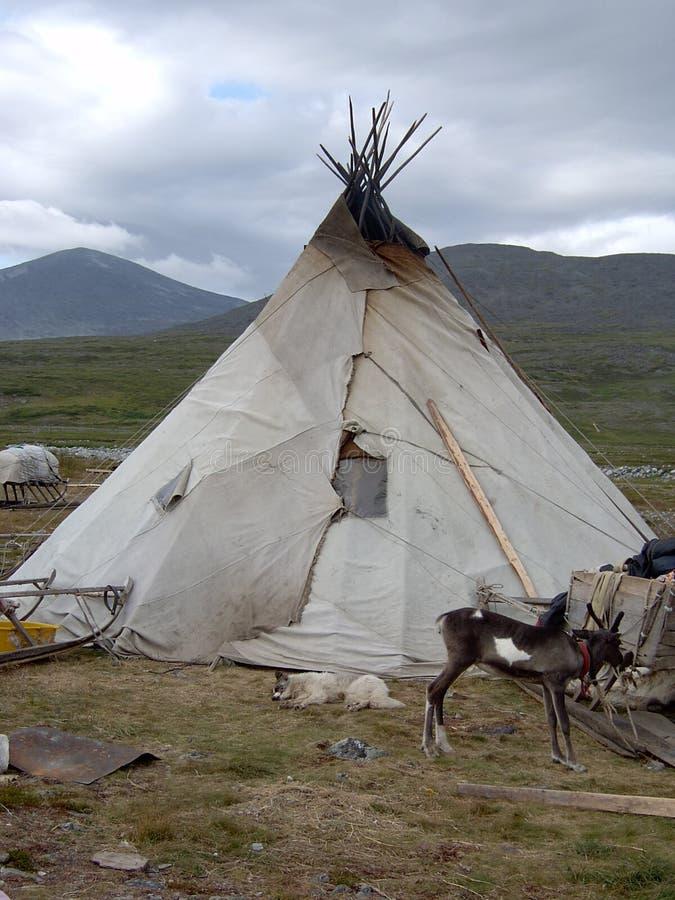 Nenets plaga #2 imagen de archivo