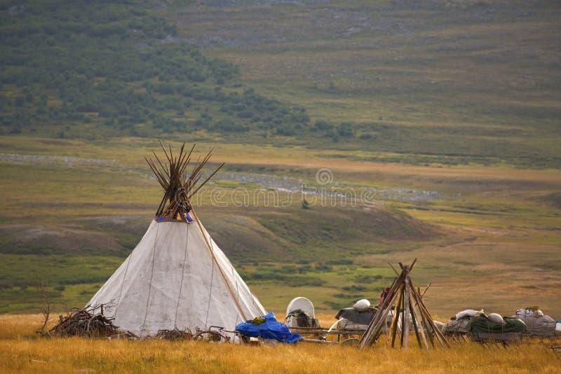Nenets poganiacz bydła reniferowy choom obraz stock