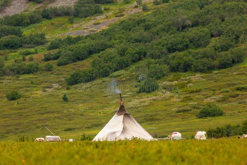 Nenets reindeer herders choom on a summer. Yamal royalty free stock photo