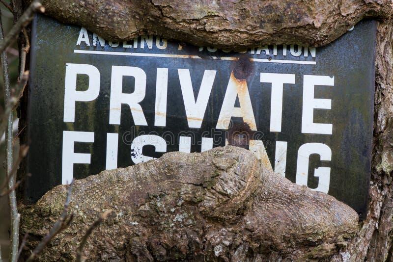 Nenhum sinal da pesca com a árvore que cresce em torno dela imagem de stock royalty free