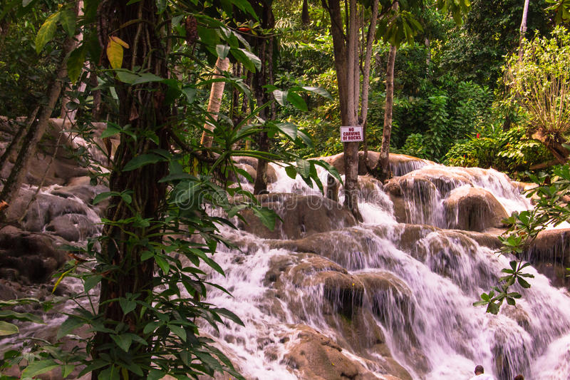 Nenhuma rocha que cinzela em Jamaica fotografia de stock royalty free