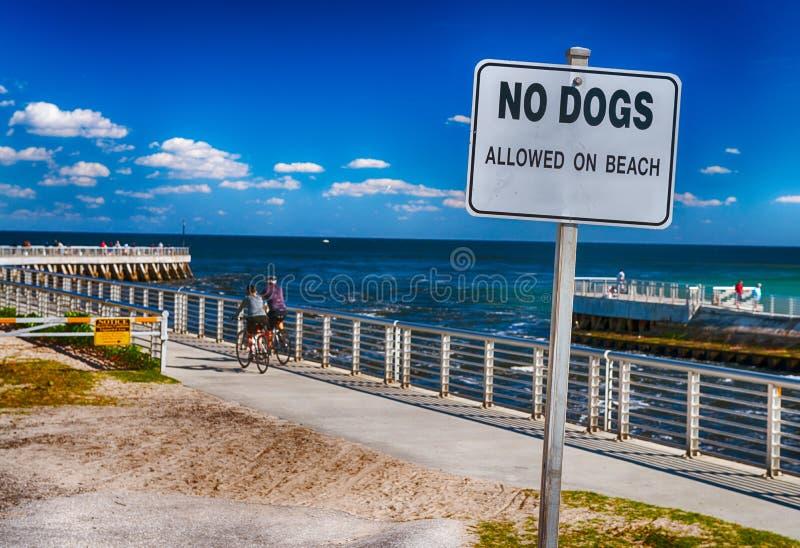Nenhuns cães permitidos no sinal da praia fotografia de stock