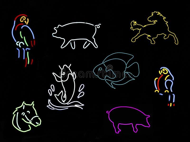 Neon Animal Signs