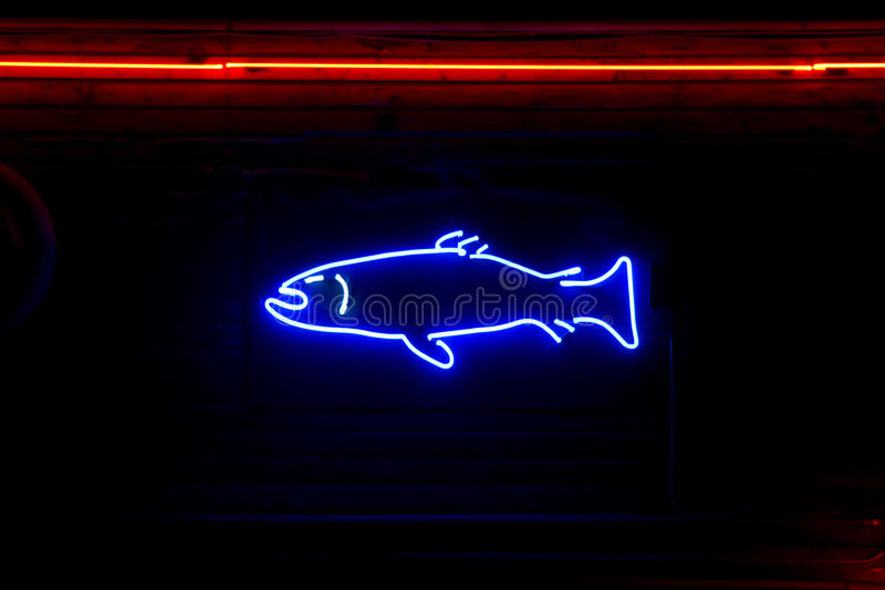 Neon fish stock image