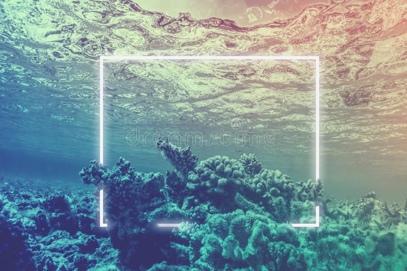 Neon light frame glowing underwater behind coral reef. Duotone royalty free stock photo
