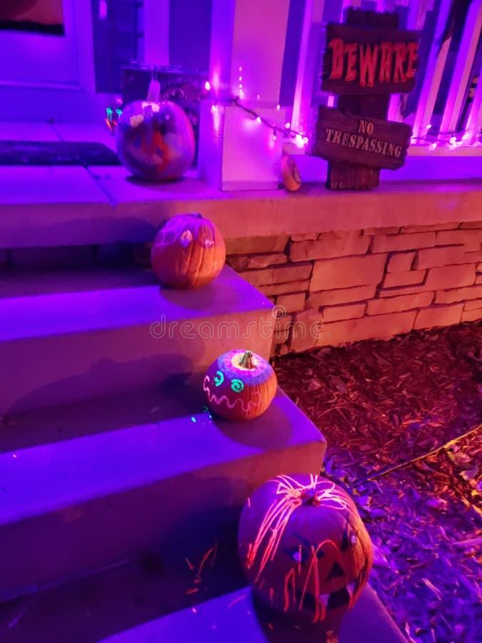 Neon pumpkins stock images