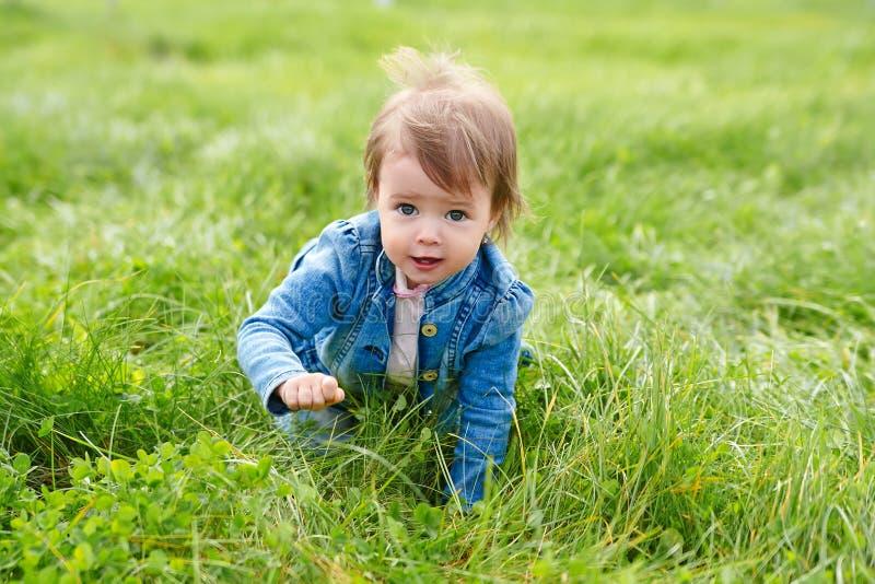 Neonata che striscia sull'erba verde immagine stock