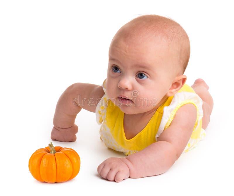 Neonata con una piccola zucca isolata su fondo bianco fotografia stock libera da diritti