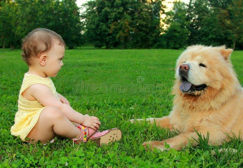 Neonata di divertimento in vestito che si siede vicino al cane fotografia stock libera da diritti