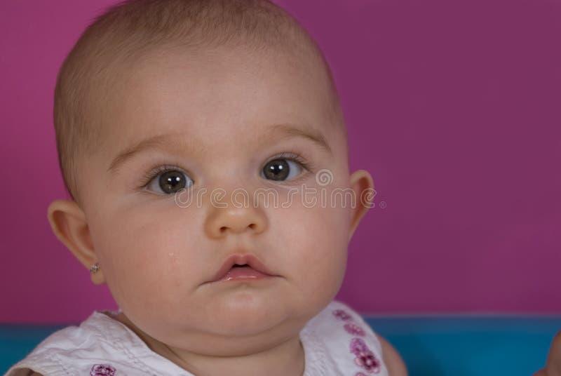 Neonata eyed verde fotografia stock