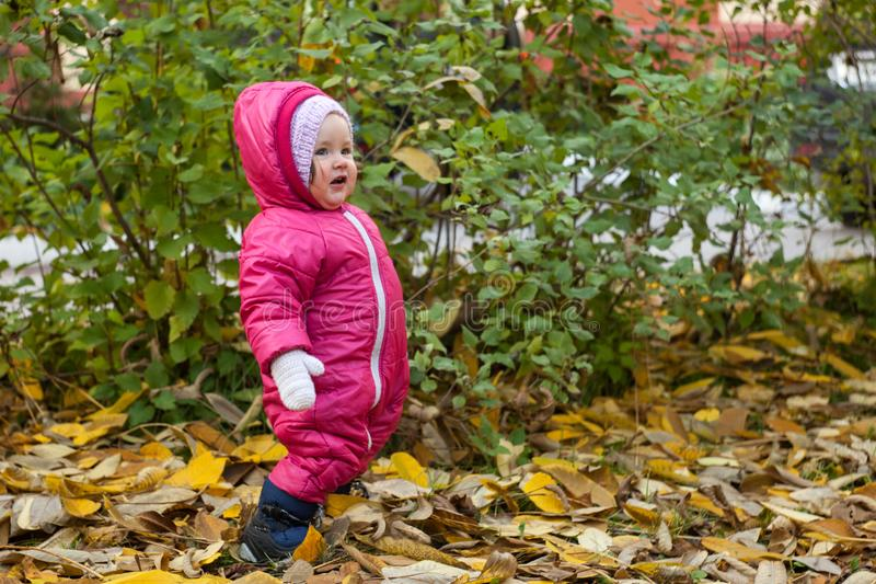 Neonata felice adorabile che gioca nel parco di autunno fotografia stock libera da diritti