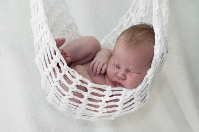 Neonato in amaca fotografia stock