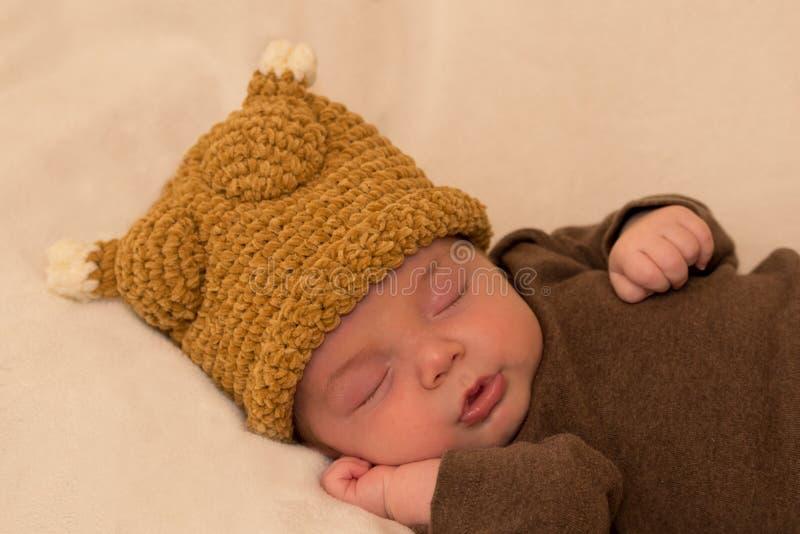 Neonato anziano di sei settimane immagini stock