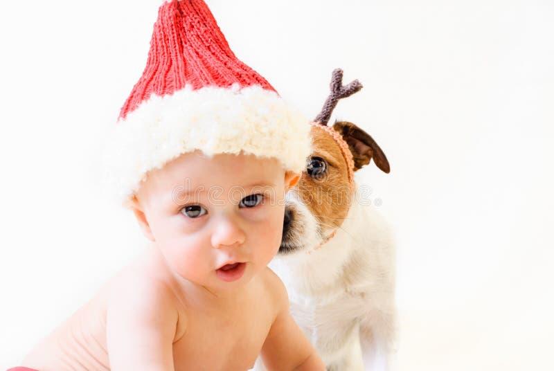 Neonato come Santa Claus e cane come renna che guarda fisso nella macchina fotografica fotografia stock