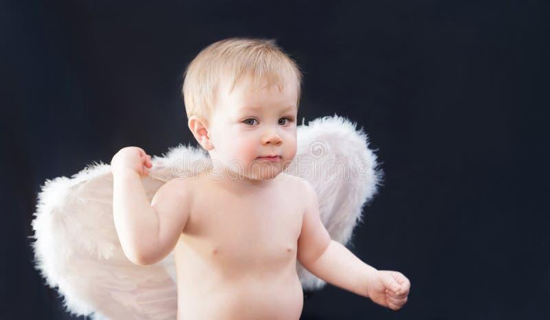 Neonato con le ali bianche, angelo, cupido su fondo scuro fotografia stock libera da diritti