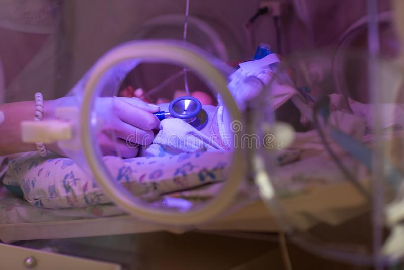 Neonato d'esame di medico femminile in incubatrice Fine sulle mani femminili con uno stetoscopio fotografie stock libere da diritti