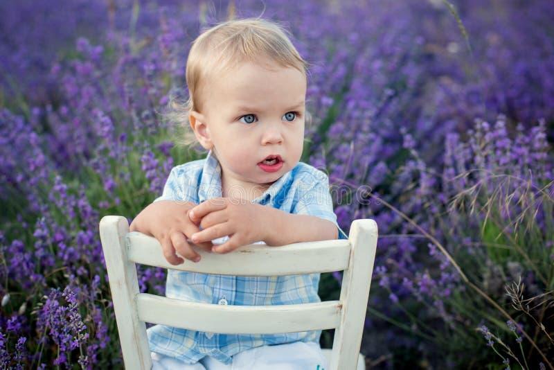 Neonato del bambino in un giacimento della lavanda fotografie stock libere da diritti