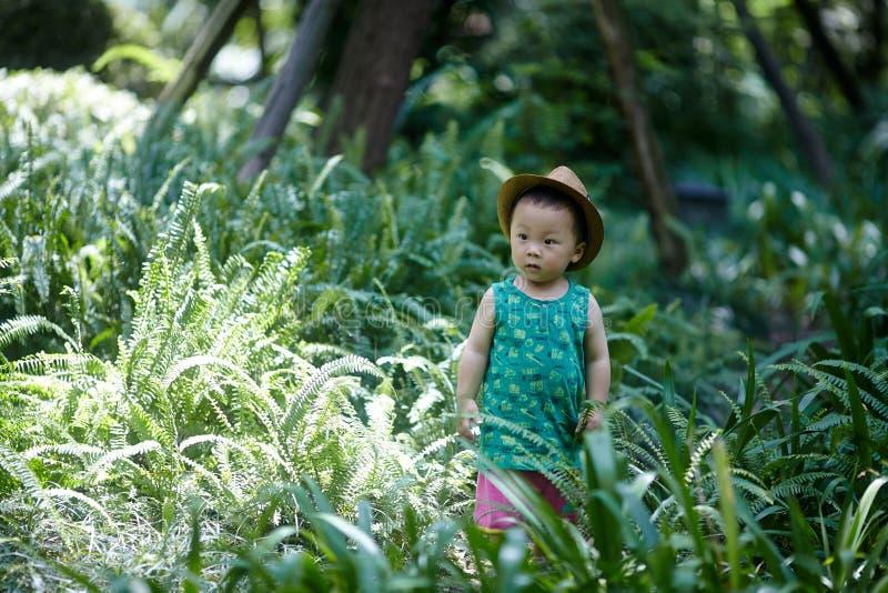 Download Neonato di estate fotografia stock. Immagine di piccolo - 56880410