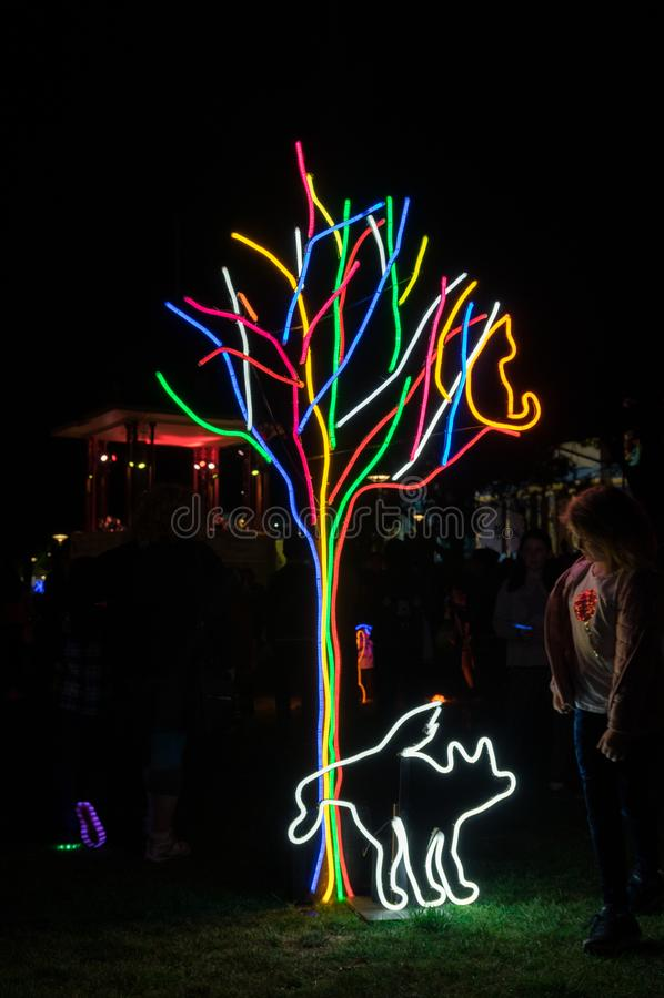 Neonhundepark-Kunstinstallation nachts weißes Geelong in Australien stockfotografie