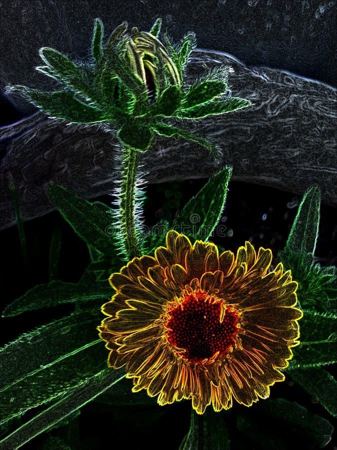 Neonowy kwiat obraz stock