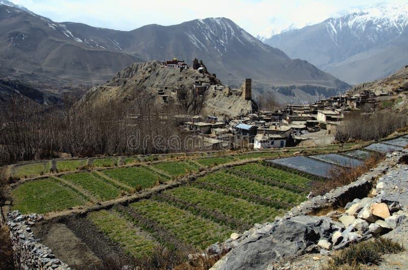 nepal för områdesjhongmuktinath by royaltyfria foton