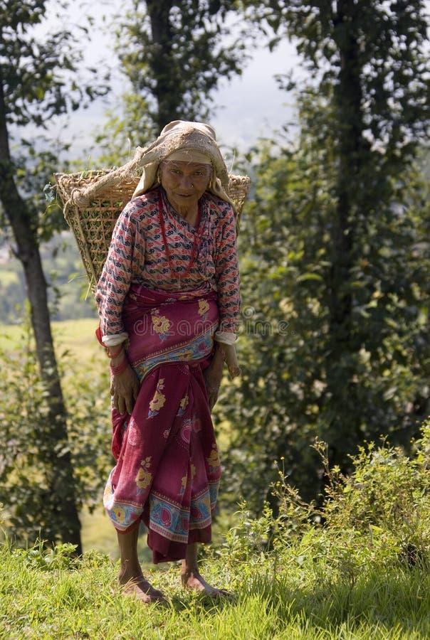 Nepal - gammalare kvinna i Kathmandu Valley royaltyfria bilder