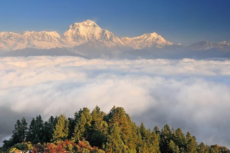 Nepal, Ghorepani, Poon Hill, Maciço de Dallagiri, Himalaya, Dallagiri se estende a oeste de Poon Hill imagens de stock royalty free