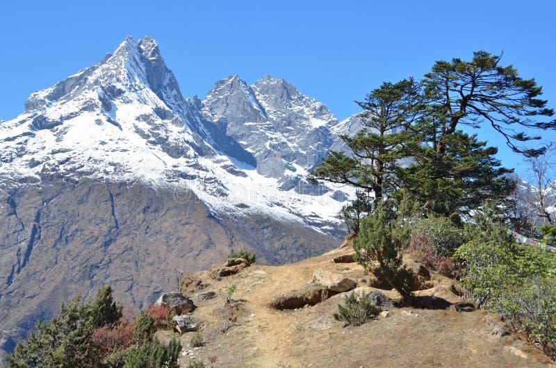 Download Nepal, Himalaya, Paisaje De La Montaña En Una Altitud De Los Metros 3800 Sobre Nivel Del Mar Imagen de archivo - Imagen de árbol, cielo: 64205651