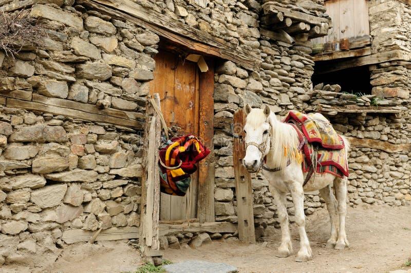 Nepal - Himalayagebergte stock foto's
