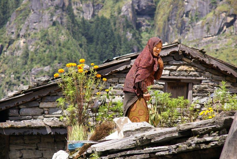 Nepal kvinna royaltyfri fotografi