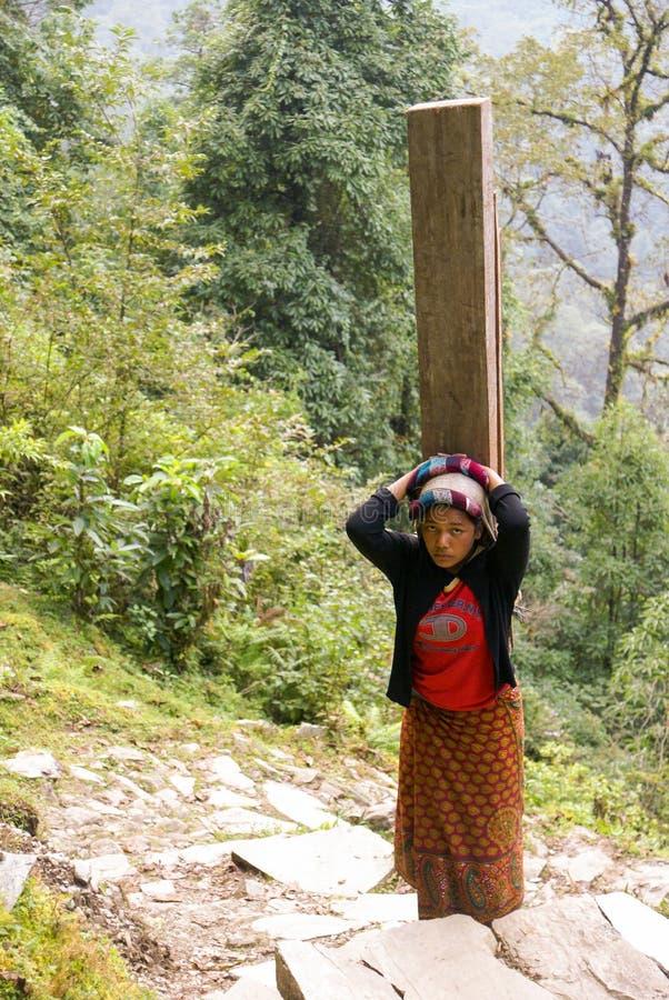 Nepal-Mädchen, schwere Last stockbild