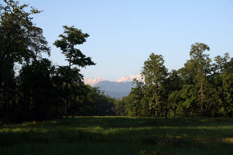 Nepal manaslu fotografia stock