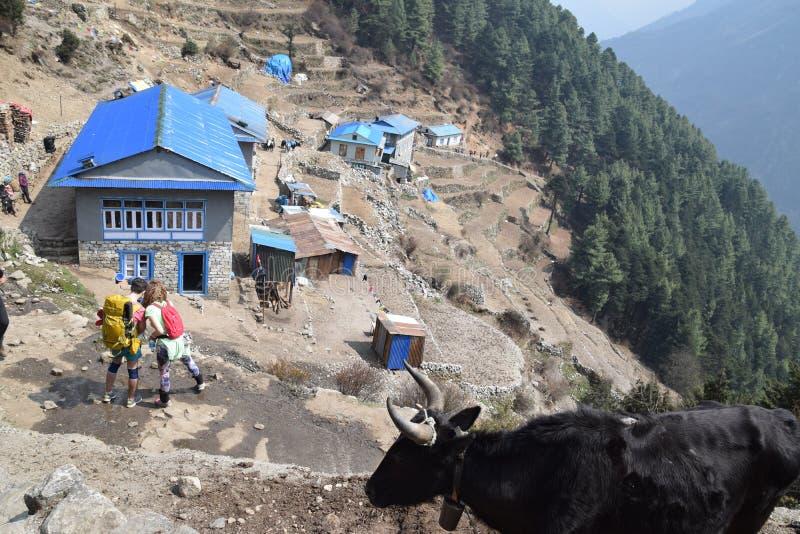 Nepal namche bazar obraz royalty free