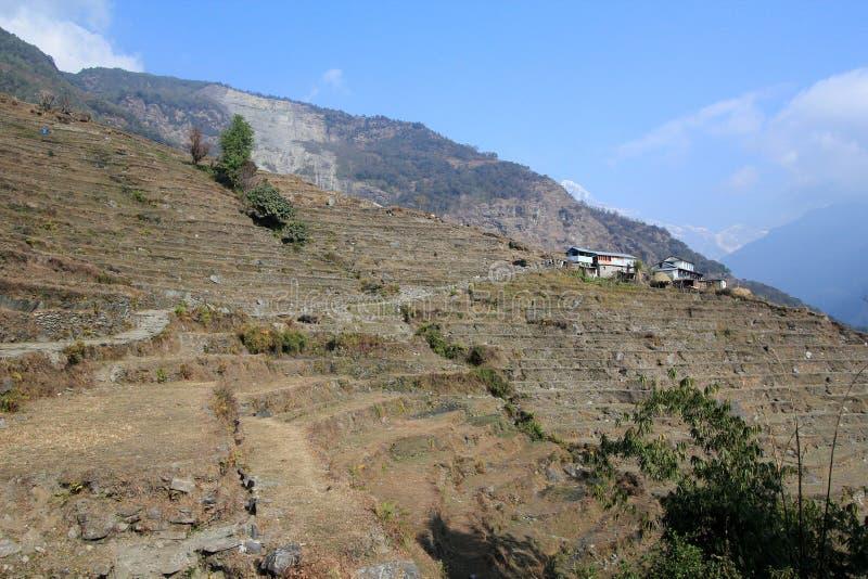 Nepal Poon wzgórza widok obraz royalty free