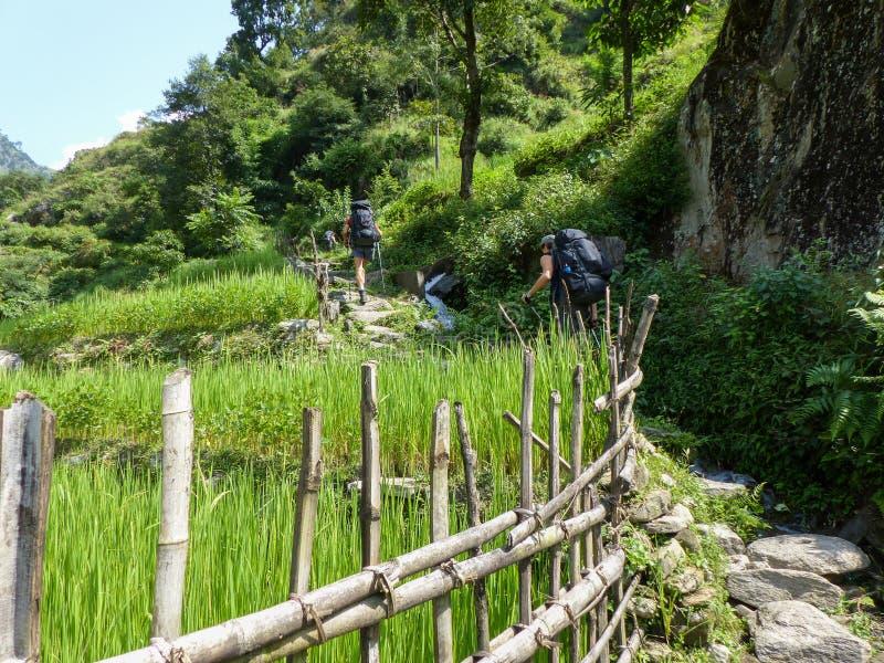 Nepal trekking royalty free stock photo
